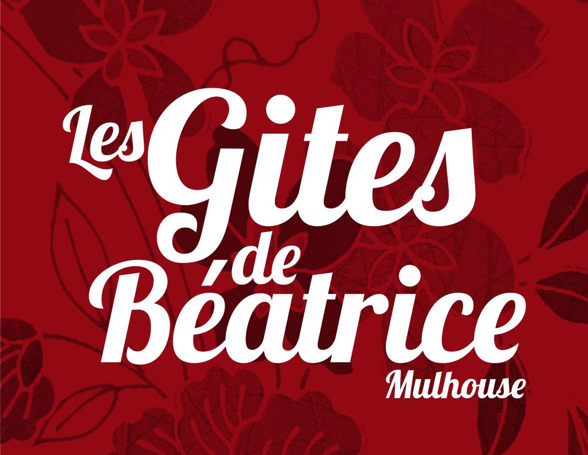 5 Gîtes URBAINS à Mulhouse